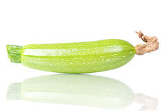 Vegetable marrow Royalty Free Stock Photo