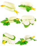 Vegetable marrow with green foliage. Isolated Stock Photos