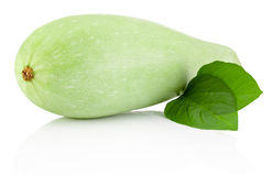 Vegetable marrow with green leaves isolated on white background Royalty Free Stock Photos