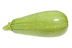 Vegetable marrow isolated Royalty Free Stock Images
