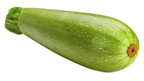 Vegetable marrow isolated on white background Stock Photography