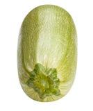 Vegetable marrow isolated on white background Stock Image