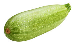 Vegetable marrow isolated on white background Stock Images
