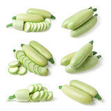 Vegetable marrow. Royalty Free Stock Images