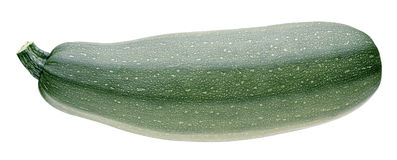 Vegetable marrow on white. Background Stock Photography