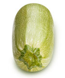 Vegetable marrow  on white background Royalty Free Stock Photography