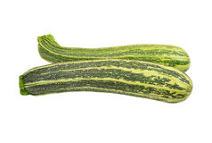 Vegetable marrow (zucchini) Royalty Free Stock Photography