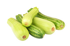 Vegetable marrow & x28;zucchini& x29; Royalty Free Stock Photos