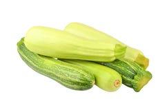 Vegetable marrow & x28;zucchini& x29; Stock Photos