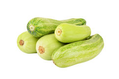 Vegetable marrow & x28;zucchini& x29; Stock Photo