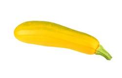 Vegetable marrow (zucchini). Isolated on white background Stock Photos
