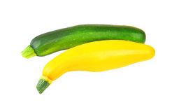 Vegetable marrow (zucchini) Royalty Free Stock Photo