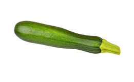 Vegetable marrow (zucchini) Stock Photography