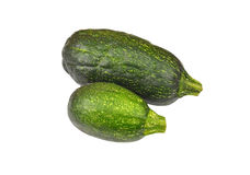 Vegetable marrow (zucchini) Stock Images