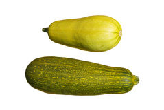 Vegetable marrows. Two ripe vegetable marrows on a white background Royalty Free Stock Image