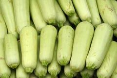 Vegetable marrows Stock Photo