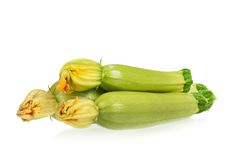 Vegetable marrows Royalty Free Stock Images