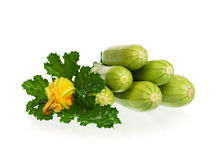 Vegetable marrows Royalty Free Stock Photography