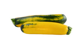 Vegetable marrows Stock Image
