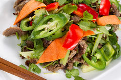 Vegetable and Meat Dish made Chinese Style Stock Photography