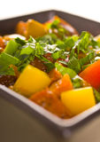 Vegetable and meat stew. Colors vegetable and meat stew Royalty Free Stock Photos
