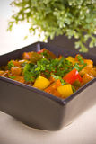 Vegetable and meat stew. Colors vegetable and meat stew Royalty Free Stock Image