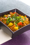 Vegetable and meat stew. Colors vegetable and meat stew Stock Photos