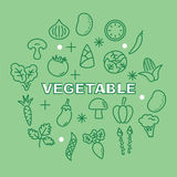 Vegetable minimal outline icons Stock Images