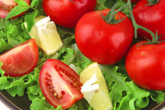 Vegetable mix on dark dish Stock Photos
