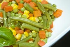 Vegetable mix meal. Vegetable mix stir fry meal Stock Photos
