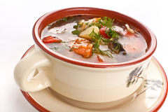 Vegetable and mushroom soup Royalty Free Stock Photo