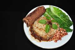 Vegetable nasi lemak Royalty Free Stock Photos