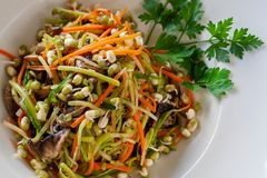Vegetable noodles from zucchini, carrots, cucumbers, mushrooms stock image