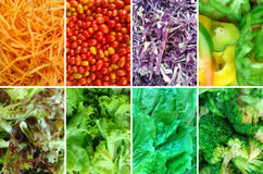 Vegetable nutrition collage Stock Image