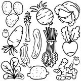 Vegetable object set of doodles Stock Photos