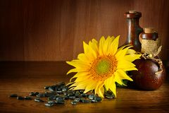 Vegetable oil in ceramic ware and sunflower seeds on wooden back. Ground. Healthy food. Free space for text Stock Images