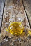 Vegetable oil Royalty Free Stock Photography