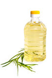 Vegetable oil with tarragon Royalty Free Stock Photo