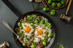 Vegetable omelet with bulls eye egg and sprouts Stock Images