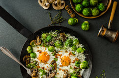 Vegetable omelet with bulls eye egg and sprouts Royalty Free Stock Image