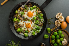 Vegetable omelet with bulls eye egg and sprouts Royalty Free Stock Photography