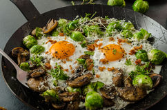 Vegetable omelet with bulls eye egg and sprouts Stock Photos