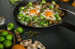 Vegetable omelet with bulls eye egg and sprouts Stock Photo