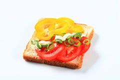Vegetable open faced sandwich Stock Photos