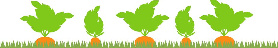 Vegetable Patch With Carrot Silhouettes Stock Photos