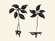 Vegetable pattern. Two fantastic plants vector for Purty Stock Image