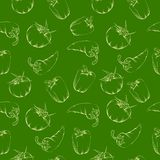 Vegetable pattern - green. Stock Images