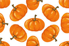 Vegetable pattern. Pumpkin seamless background. Stock Images
