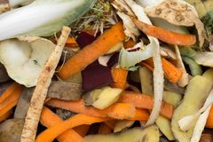 Vegetable peelings in composting pile stock photos
