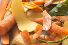 Vegetable peels for compost stock photography